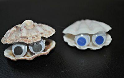 Seashell critter couple
