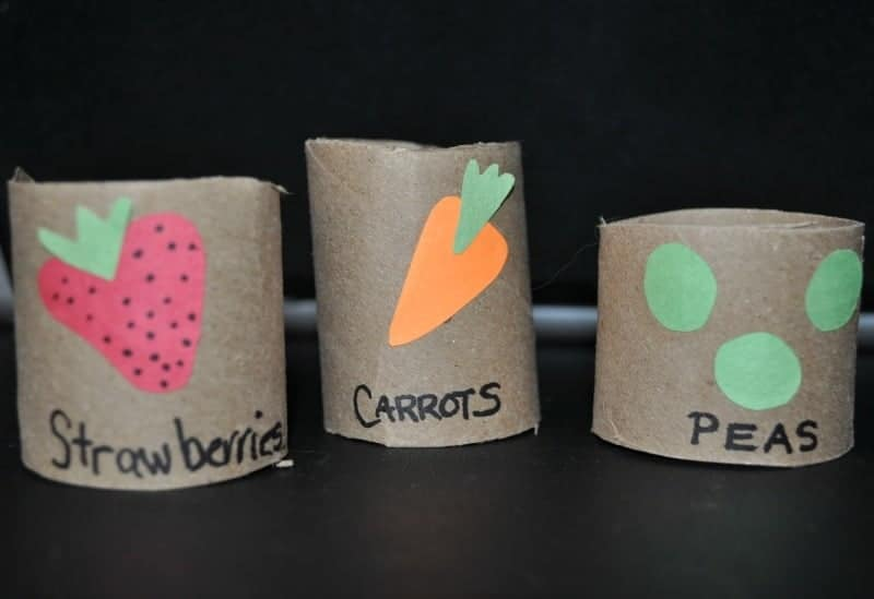 toilet Paper roll Plant starters
