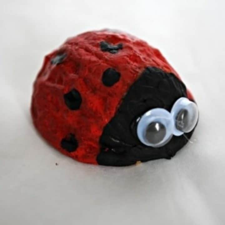 Walnut ladybug painting craft