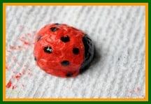 How to make a ladybug from a walnut