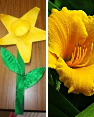 simple daffodil craft
