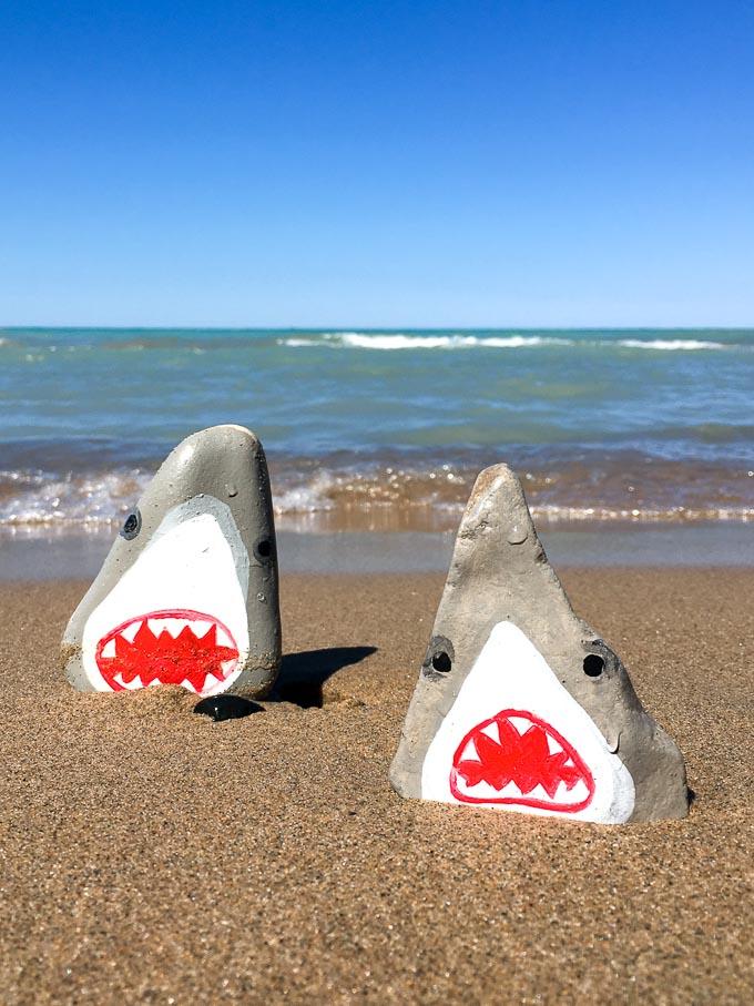 Painted Rocks Sharks