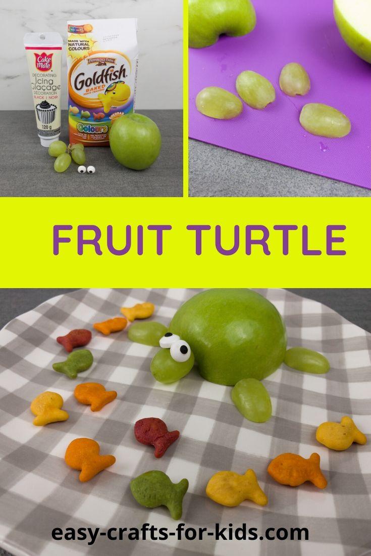 FRUIT TURTLE Craft
