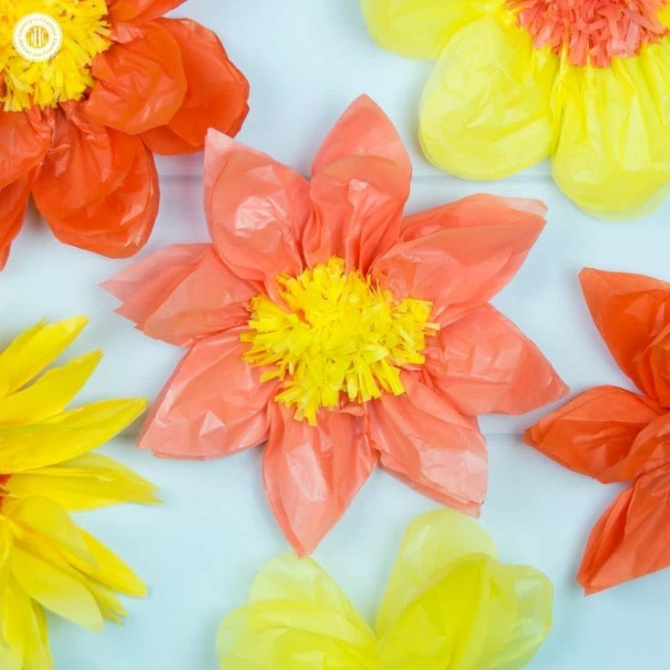 Giant Tissue Paper Flowers – Easy Paper Craft DIY