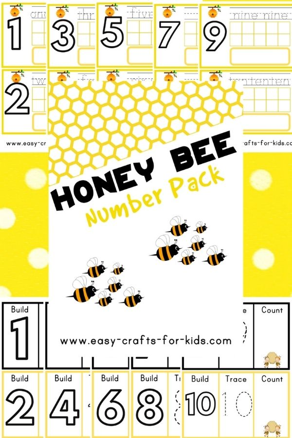 Honey Bee Numbers 1-10 Worksheets for Preschool