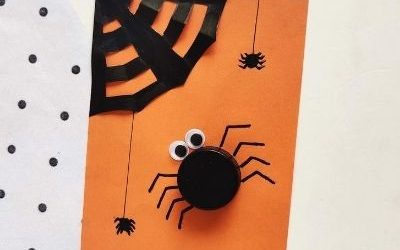 spider craft with cap