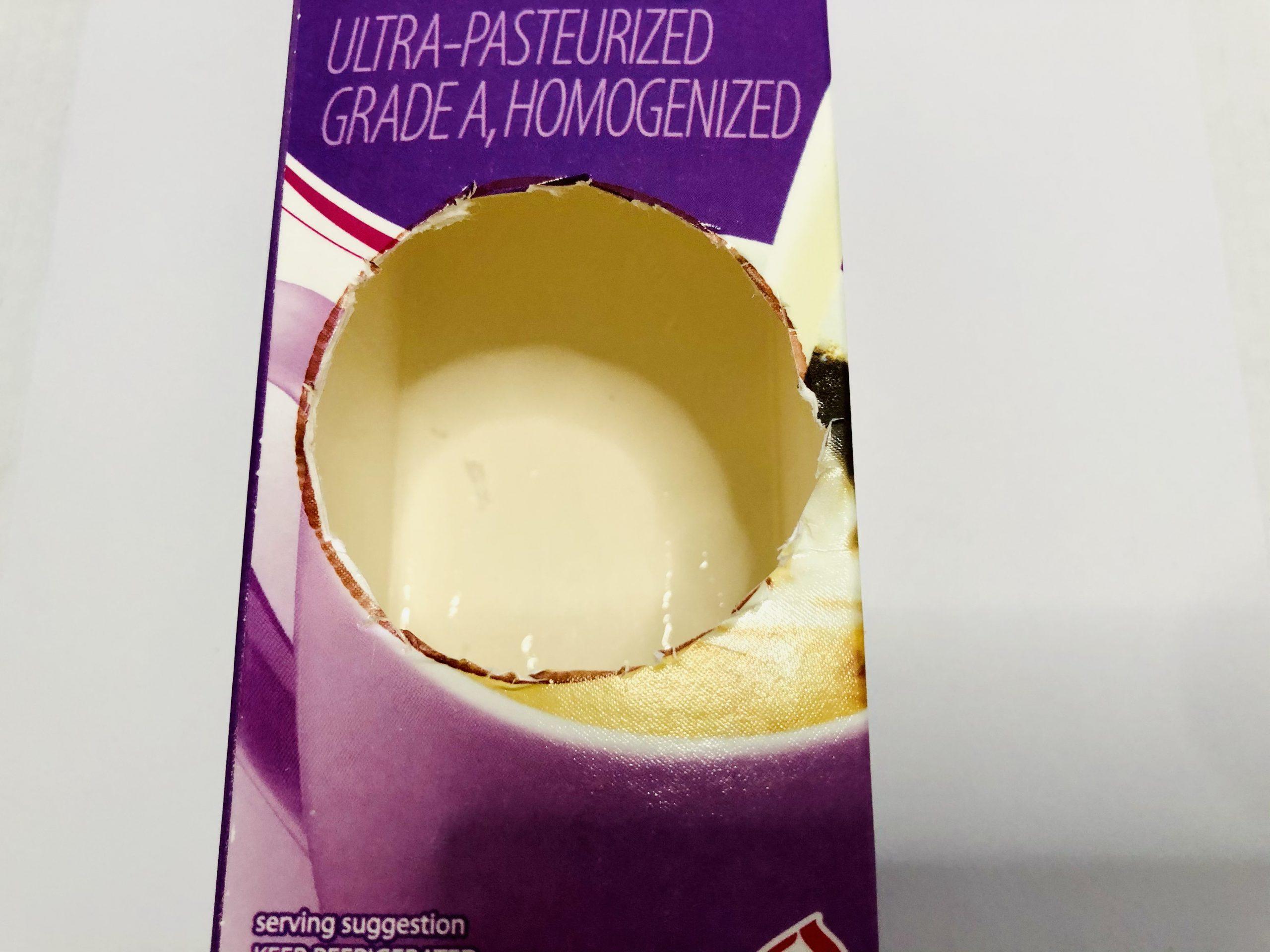 diy milk carton bird house process