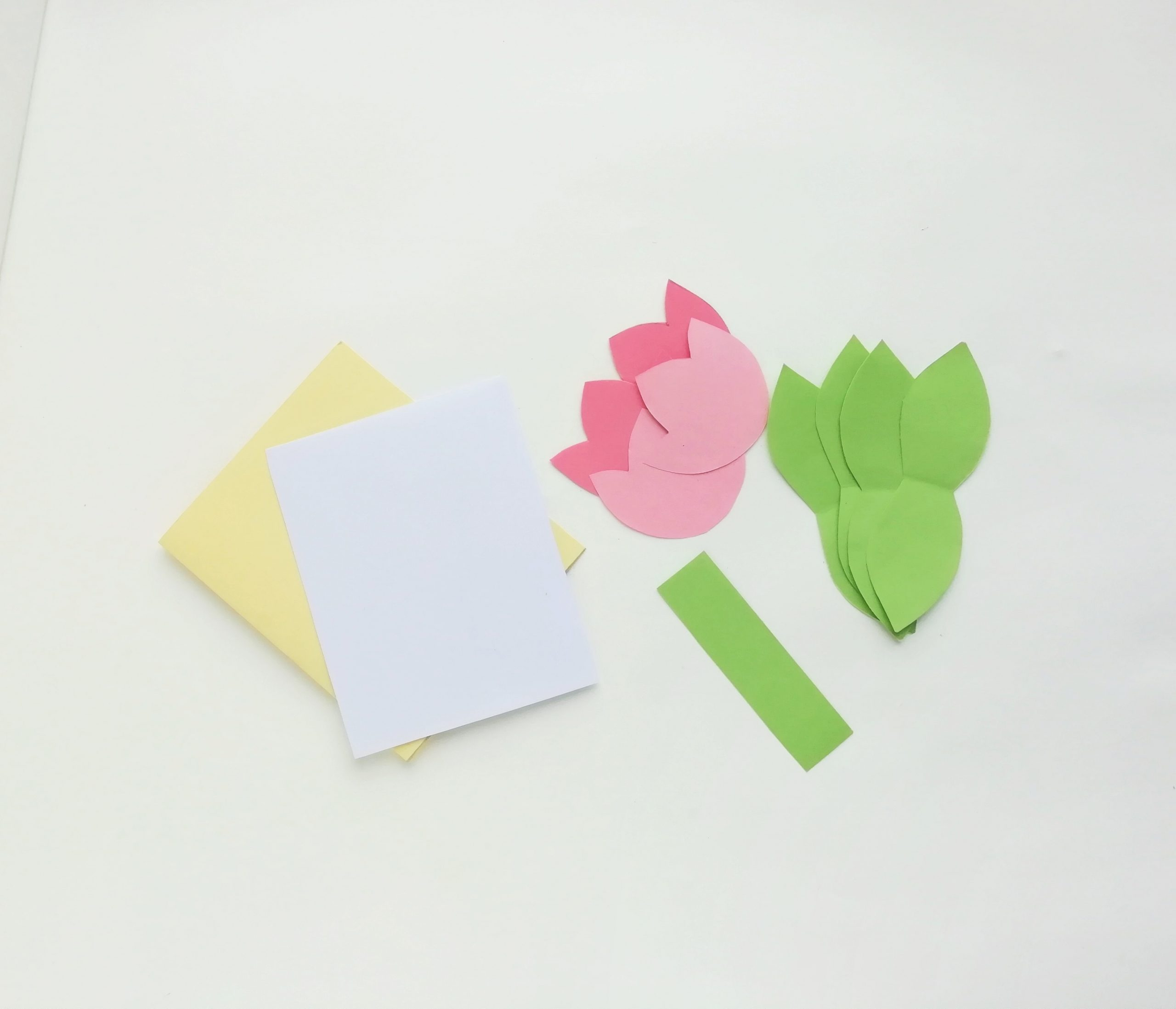 tulip flower pop up card template