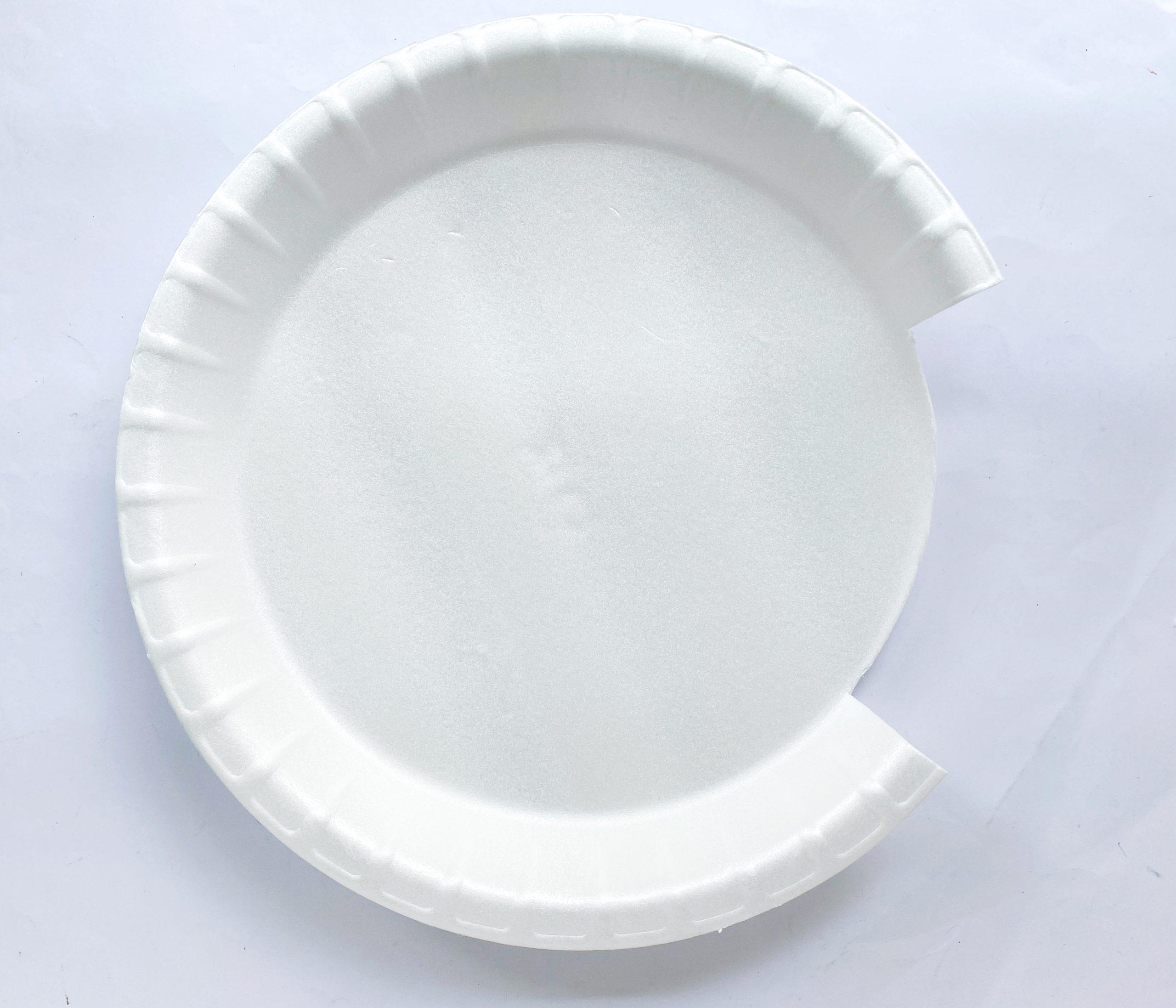 sea paper plate craft procedure