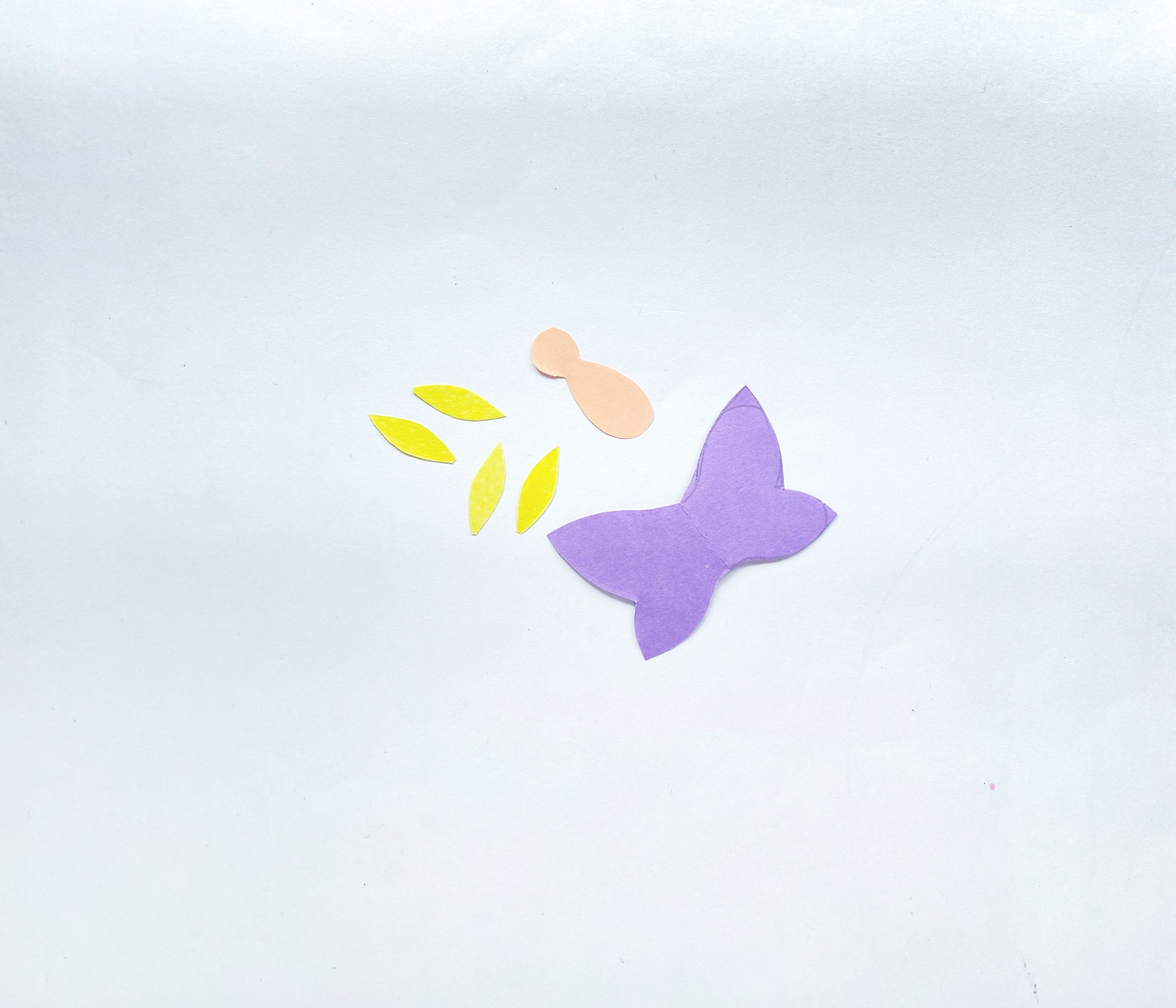 paper butterfly craft procedure