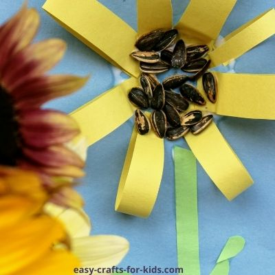 sunflower craft with paper